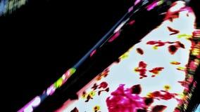 färger Royaltyfria Bilder