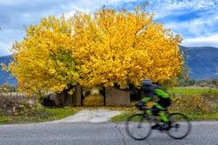 Färger av Abruzzo i Autumb Royaltyfria Bilder