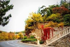 Färger av hösten Arkivbild