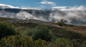 Färger av hösten i Georgia Slutet av Oktober 2015 Arkivbild