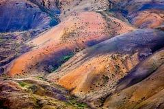 Färger av Himalayas Fotografering för Bildbyråer