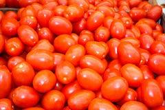 Färger av marknadsstället i Israel Royaltyfri Foto