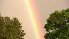 Färger av regnbågen stock video