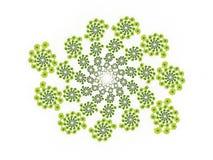 Färger blommar dekorativt vektor illustrationer