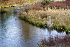 färger faller floden för gräsmontana reflexioner Royaltyfri Bild
