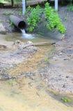 färger kontrastr högt rørvatten Arkivbild