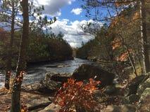 Färger längs floden Fotografering för Bildbyråer