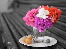 Färgerna av blommorna Royaltyfri Bild