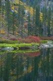 Färgerna av en bergssida Arkivbilder
