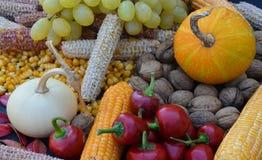 färgerna av hösten på tabellen arkivfoton