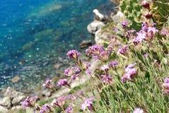 Färgerna av havet av capoen Milazzo för ‹för †Royaltyfria Bilder
