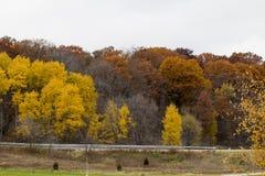 Färgerna av nedgången i Midwesten royaltyfri bild