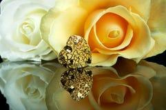färgförälskelse Royaltyfri Fotografi