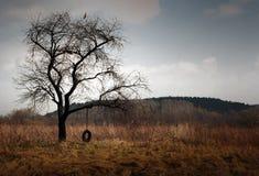 färgfall fotografering för bildbyråer