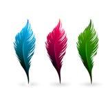 färgfjädrar Arkivbilder