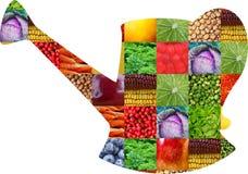 Färgfrukter och grönsaker ny mat Begrepp collage arkivbild