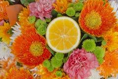Färgglad blomma och klippt apelsin Royaltyfria Bilder