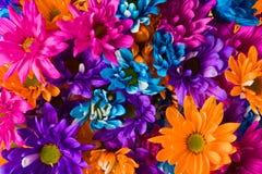 Färgglad blommabukett Royaltyfri Fotografi