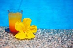 Färgglad coctail med den gula blomman över blåa lodisar för yttersidavatten Arkivfoton