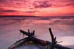 färgglad havssolnedgång Arkivfoto