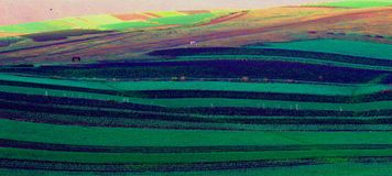 färgglad jordbruksmark Royaltyfri Bild