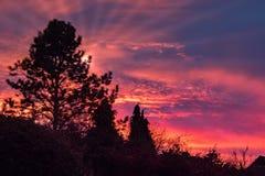 Färgglad solnedgång över östliga Grinstead Arkivbild