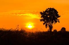 Färgglad solnedgång royaltyfri fotografi