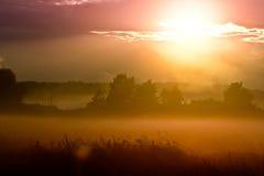 Färgglad solnedgång Royaltyfri Foto