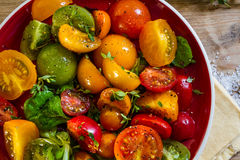 Färgglad tomatsallad Royaltyfria Foton