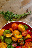 Färgglad tomatsallad Arkivbild