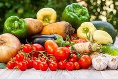 Färgglad variation av det nya hemmet - fullvuxna grönsaker Arkivbild
