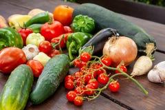 Färgglad variation av det nya hemmet - fullvuxna grönsaker Arkivbilder