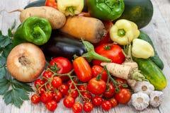 Färgglad variation av det nya hemmet - fullvuxna grönsaker Royaltyfri Bild