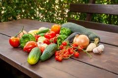 Färgglad variation av det nya hemmet - fullvuxna grönsaker arkivfoto