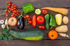 Färgglad variation av det nya hemmet - fullvuxna grönsaker royaltyfri foto