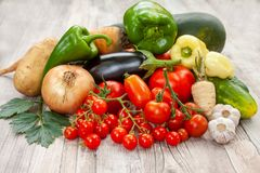 Färgglad variation av det nya hemmet - fullvuxna grönsaker Royaltyfria Bilder