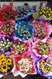 färgglada blommor Royaltyfri Fotografi