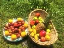 Färgglada frukter arkivfoton