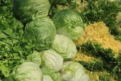 färgglada olika grönsaker Royaltyfria Bilder