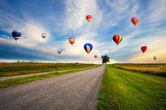 Färgglade ballonger för varm luft som flyger över kosmosblommafält på su arkivbilder