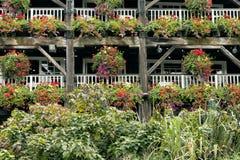 Färgglade blommor i hängande korgar på balkonger royaltyfria bilder