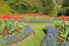Färgglade blommor och gräsmattabana i en formell trädgård arkivfoton