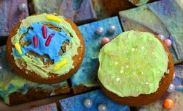 Färgglade kakor och kakor Royaltyfri Fotografi