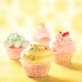 Färgglade muffin Arkivbilder
