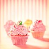 Färgglade muffin Arkivfoton