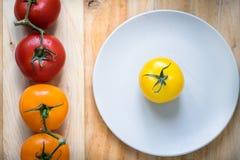 Färgglade tomater i den vita plattan Fotografering för Bildbyråer