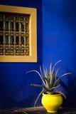 Färgglat blåtthus i trädgården av Yves Saint Laurent Royaltyfria Foton