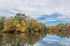 Färgglat när nedgång som kommer, höst i Central Park royaltyfri foto