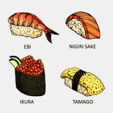 Färgglat skissa av den olika sushi Vektortemaki-, philadelfia-, Kalifornien, futomaki- och sashimisymbol vektor illustrationer