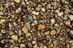 Färggrustextur Kiselstenar och stenar som är våta, textur, bakgrund Arkivfoto
